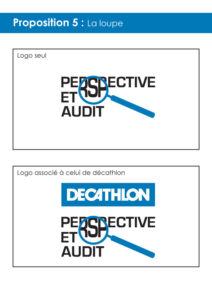 Perspective&Audit5